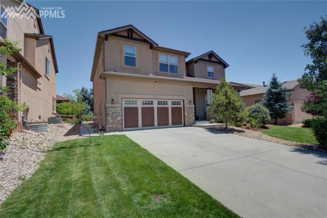 8809 Rory Creek Street, Colorado Springs, CO 80924 (#7310582) :: The Daniels Team
