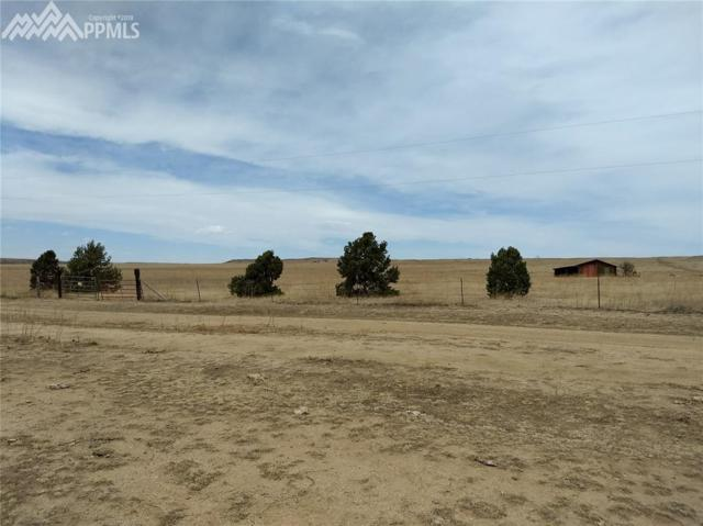 00 County 14 Road, Rush, CO 80833 (#7317771) :: The Treasure Davis Team