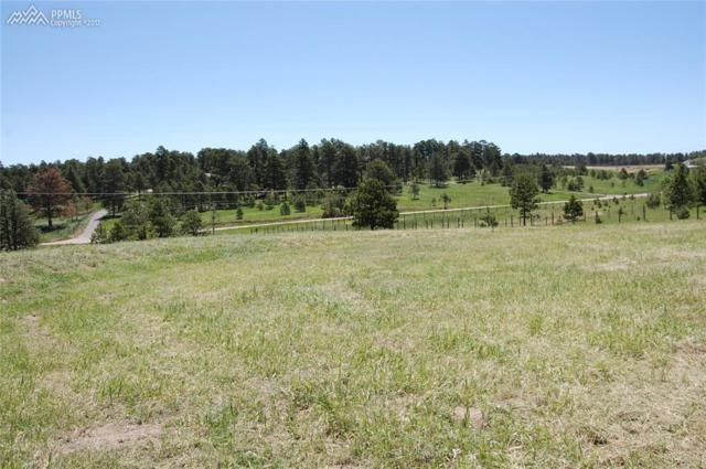 16875 Oldborough Heights, Monument, CO 80132 (#7320662) :: 8z Real Estate