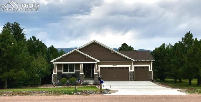 18570 White Fawn Drive, Monument, CO 80132 (#7335124) :: CC Signature Group