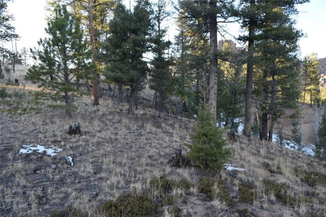 373 Overlook Circle, Sedalia, CO 80135 (#7355139) :: Action Team Realty