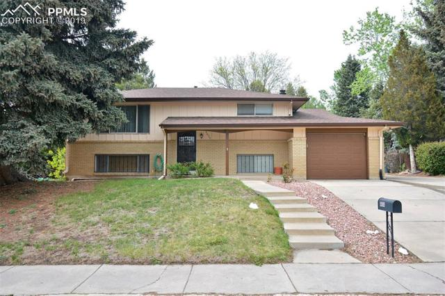 4614 Woodbury Drive, Colorado Springs, CO 80915 (#7355607) :: Tommy Daly Home Team