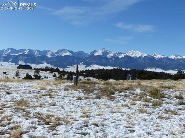 266 Navajo Path, Westcliffe, CO 81252 (#7357847) :: Action Team Realty