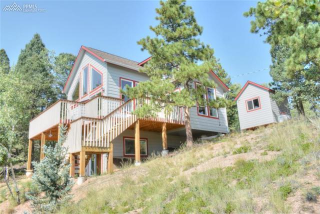 130 Potlatch Trail, Woodland Park, CO 80863 (#7369913) :: 8z Real Estate