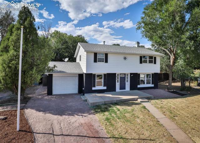630 Dove Place, Colorado Springs, CO 80906 (#7387031) :: The Peak Properties Group