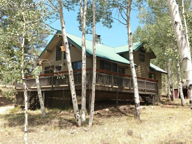 635 Obsidian Drive, Florissant, CO 80816 (#7393053) :: 8z Real Estate