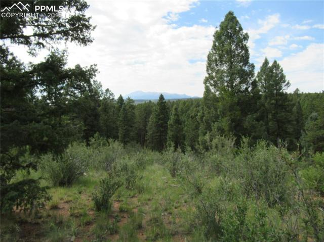 TBD Being Verified Road, Woodland Park, CO 80863 (#7394735) :: The Treasure Davis Team