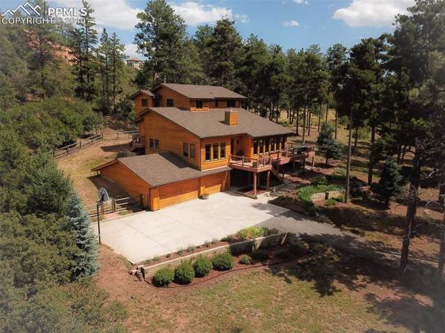 4769 Red Rock Drive, Larkspur, CO 80118 (#7401232) :: Tommy Daly Home Team