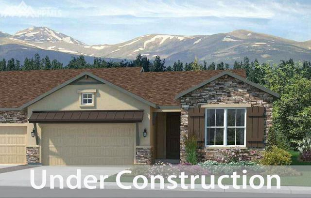 16466 Mountain Mist Drive, Monument, CO 80132 (#7406802) :: 8z Real Estate