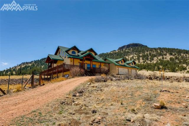 1256 Meadow Lane, Guffey, CO 80820 (#7426641) :: Action Team Realty