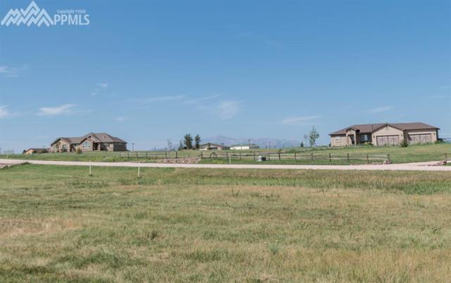 17165 Papago Way, Colorado Springs, CO 80908 (#7441706) :: The Treasure Davis Team