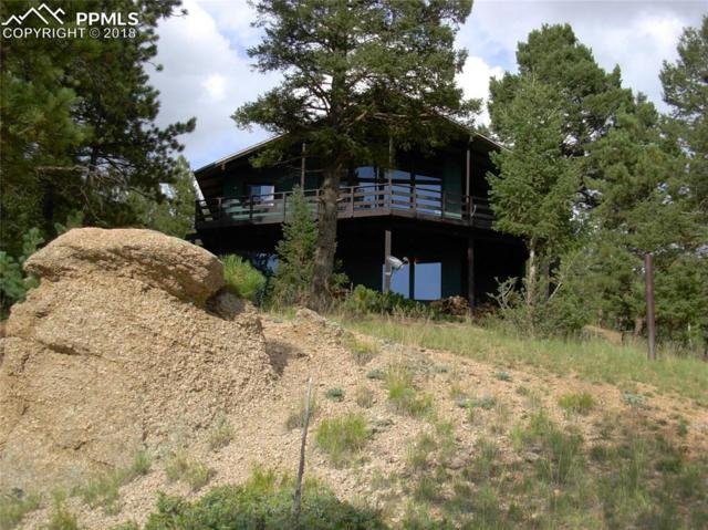 111 Lakewood Circle, Divide, CO 80814 (#7442015) :: CENTURY 21 Curbow Realty