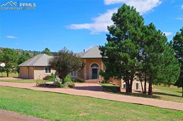 593 Forest View Way, Monument, CO 80132 (#7443030) :: Action Team Realty