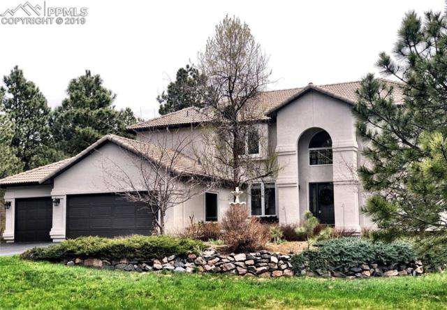 19075 Merry Men Circle, Monument, CO 80132 (#7476892) :: Action Team Realty