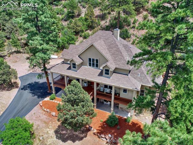 114 N Kathy Lane, Colorado Springs, CO 80926 (#7490847) :: Action Team Realty