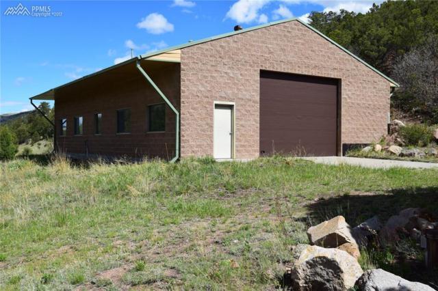 3889 County 11 Road, Canon City, CO 81212 (#7494204) :: 8z Real Estate