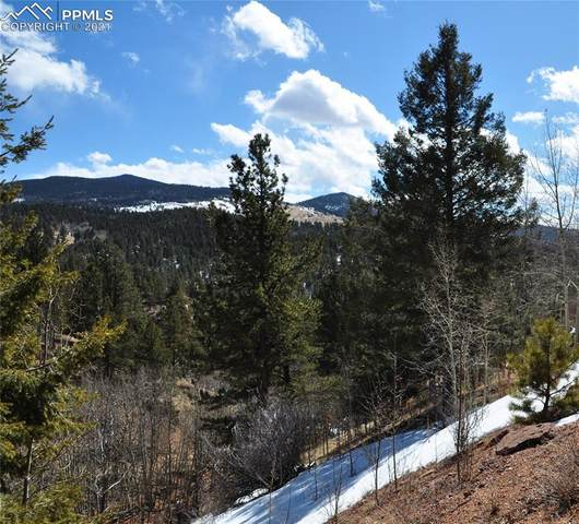 368 El Paso Court, Cripple Creek, CO 80813 (#7547877) :: The Gold Medal Team with RE/MAX Properties, Inc