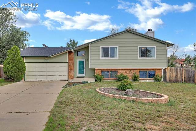 7875 Chimney Terrace, Colorado Springs, CO 80920 (#7554355) :: Tommy Daly Home Team