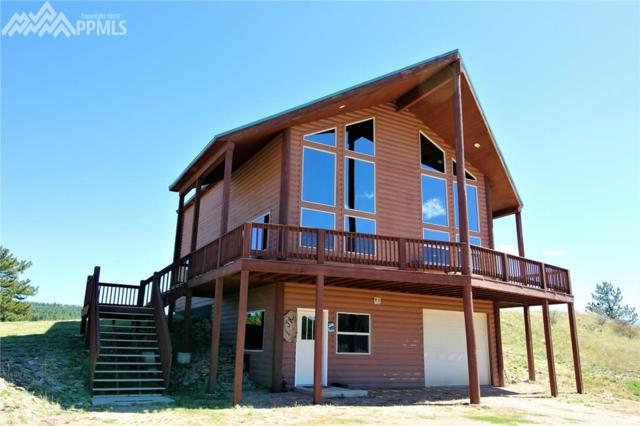 892 County 31 Road, Florissant, CO 80816 (#7558235) :: 8z Real Estate