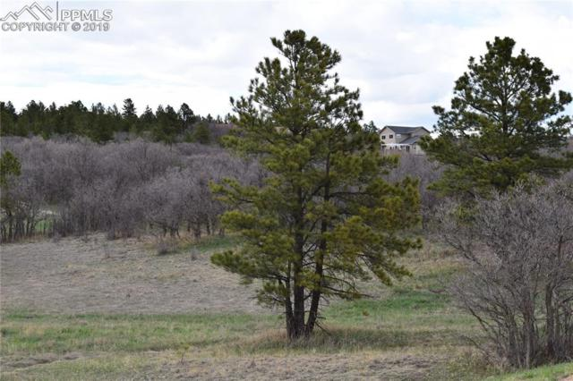 620 Pioneer Camp View, Monument, CO 80133 (#7567048) :: The Dixon Group