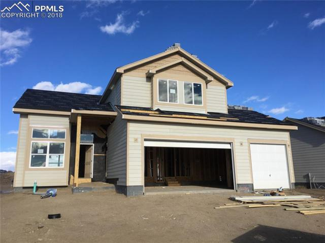 10054 Exeter Trail, Peyton, CO 80831 (#7580420) :: Action Team Realty