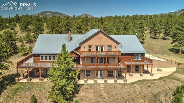 750 Old Kathleen Trail, Guffey, CO 80820 (#7589176) :: Jason Daniels & Associates at RE/MAX Millennium
