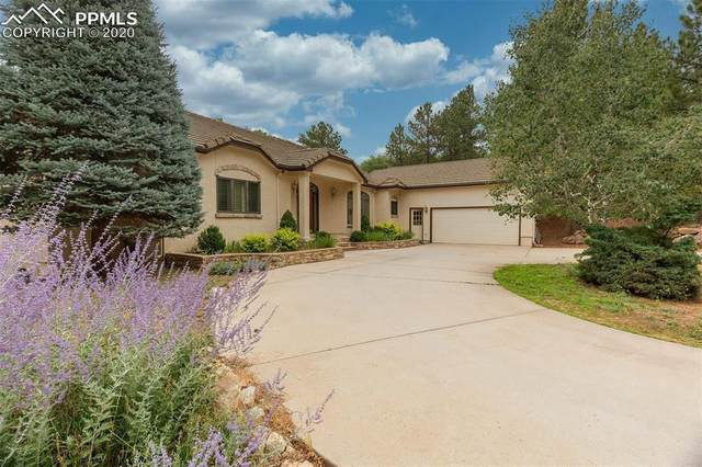 2805 Halleys Court, Colorado Springs, CO 80906 (#7615774) :: CC Signature Group