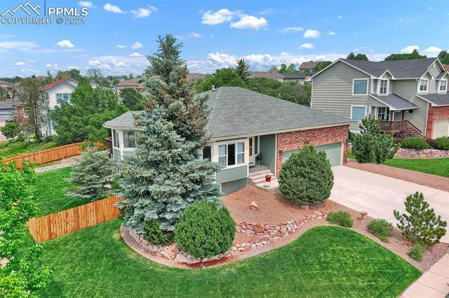 10155 Ottertail Court, Colorado Springs, CO 80920 (#7617696) :: Action Team Realty