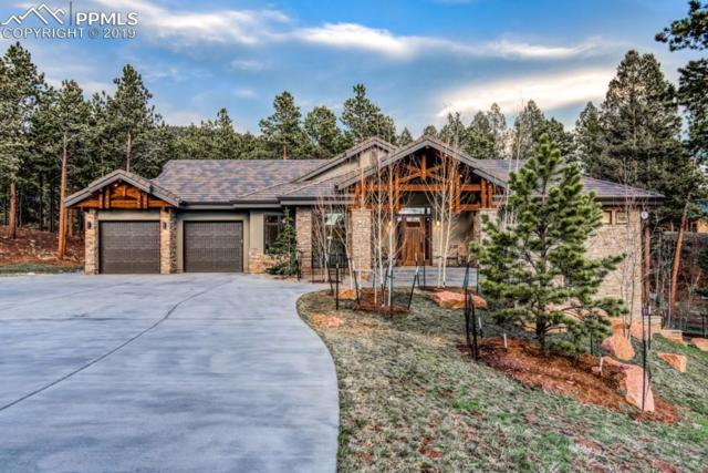241 Thunder Ridge Drive, Woodland Park, CO 80863 (#7621340) :: Perfect Properties powered by HomeTrackR