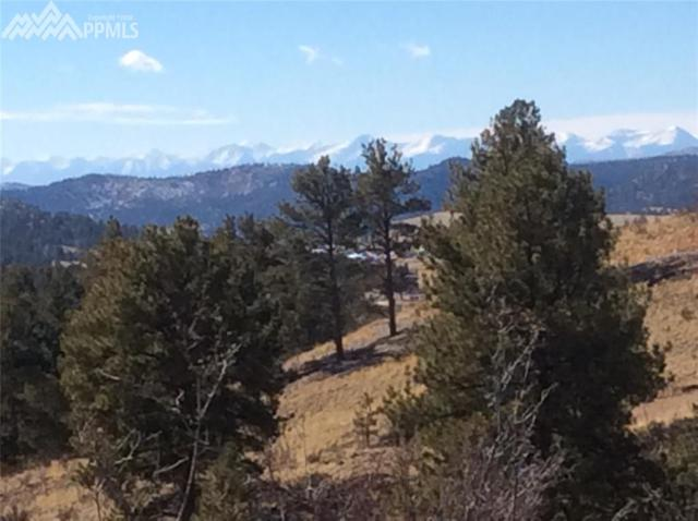 754 Apache Trail, Florissant, CO 80816 (#7649638) :: 8z Real Estate