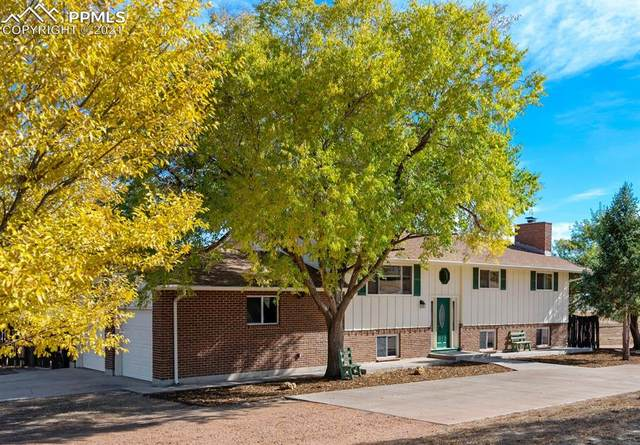 6535 Rolling View Drive, Colorado Springs, CO 80925 (#7658046) :: The Dixon Group