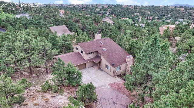 6115 Lemonwood Drive, Colorado Springs, CO 80918 (#7660240) :: 8z Real Estate