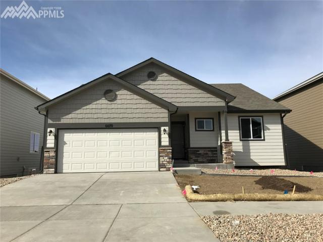 6070 Jorie Road, Colorado Springs, CO 80927 (#7664898) :: 8z Real Estate