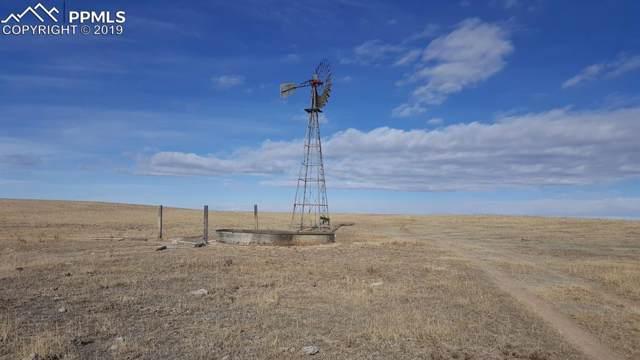 33644B Shear Road, Yoder, CO 80864 (#7664927) :: The Daniels Team
