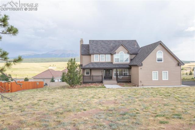 105 Matthew Road, Divide, CO 80814 (#7696340) :: Action Team Realty
