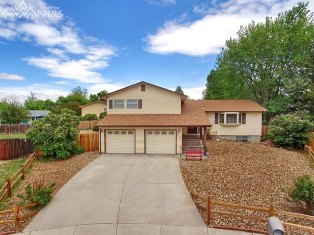 7237 River Bend Road, Colorado Springs, CO 80911 (#7766670) :: The Peak Properties Group