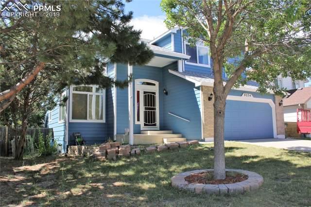 8234 Turkey Run Drive, Colorado Springs, CO 80920 (#7789938) :: CC Signature Group