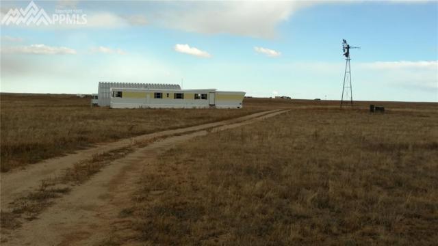 8355 N Yoder Road, Calhan, CO 80808 (#7795358) :: The Peak Properties Group