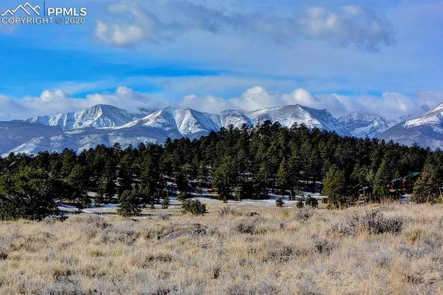 296 Arapaho Circle, Westcliffe, CO 81252 (#7807774) :: Action Team Realty