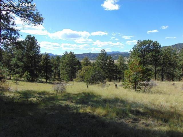 653 Lakeview Forest Heights, Florissant, CO 80816 (#7827436) :: Compass Colorado Realty
