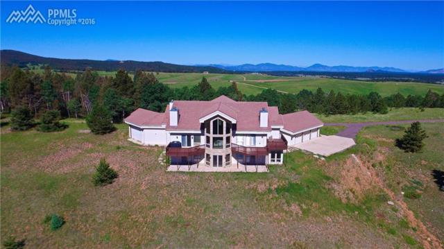 4755 Elk Valley Road, Divide, CO 80814 (#7831325) :: 8z Real Estate