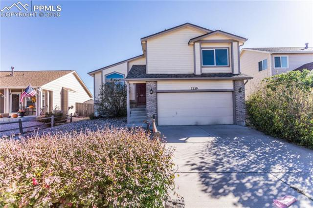 7229 Moss Bluff Court, Fountain, CO 80817 (#7832075) :: Jason Daniels & Associates at RE/MAX Millennium