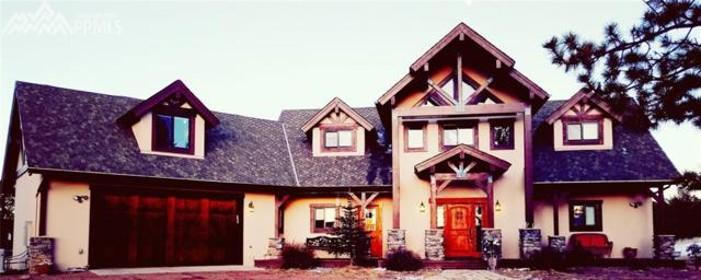 472 Chaparral Trail Trail, Florissant, CO 80816 (#7854073) :: Jason Daniels & Associates at RE/MAX Millennium