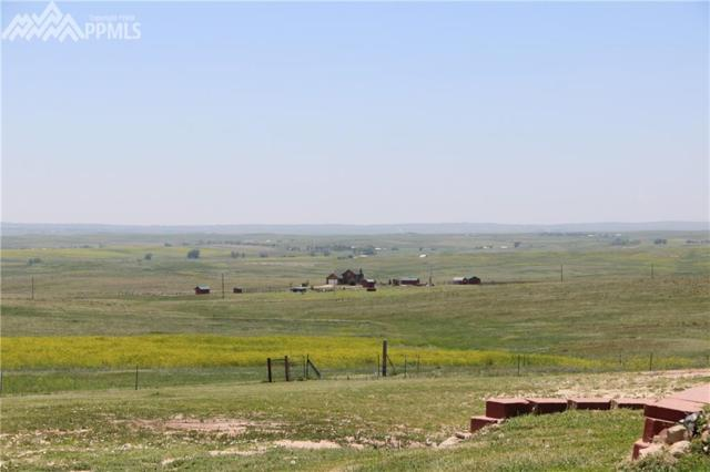 0 County 101 Road, Ramah, CO 80832 (#7868598) :: 8z Real Estate