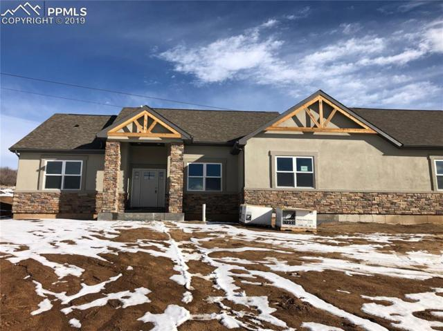 2822 Waterfront Drive, Monument, CO 80132 (#7908180) :: Action Team Realty