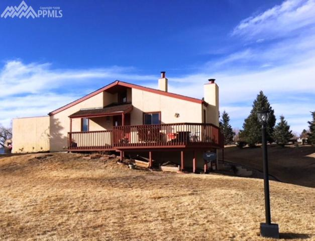 356 Mission Hill Way, Colorado Springs, CO 80921 (#7913167) :: The Treasure Davis Team