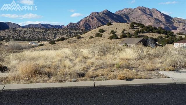 440 Ore Drive, Canon City, CO 81212 (#7926371) :: 8z Real Estate