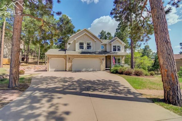 16097 Red Fox Lane, Colorado Springs, CO 80921 (#7935131) :: The Peak Properties Group