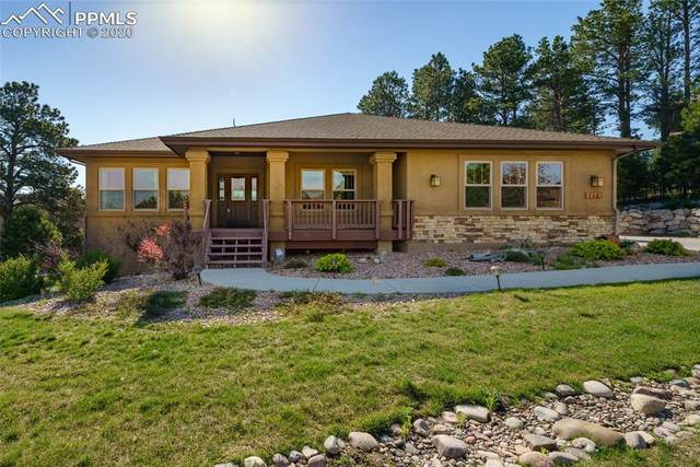 1173 Greenland Forest Drive, Monument, CO 80132 (#7947137) :: 8z Real Estate