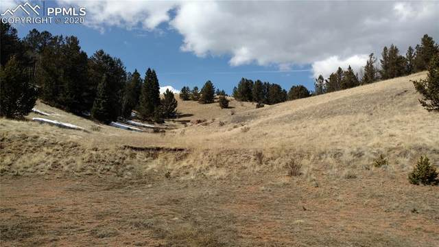 3179 County Road 61, Cripple Creek, CO 80813 (#7952130) :: Finch & Gable Real Estate Co.
